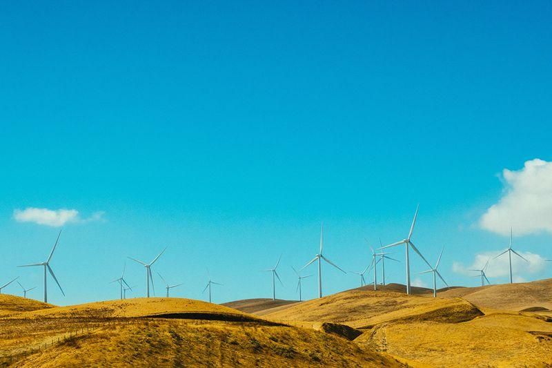 Texas windmills
